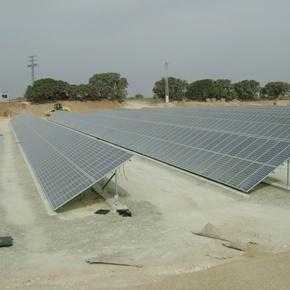 Martifer Solar reforesta sus plantas solares fotovoltaicas
