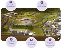 Dalkia firma un convenio para desarrollar la primera Planta de Biomasa de Murcia