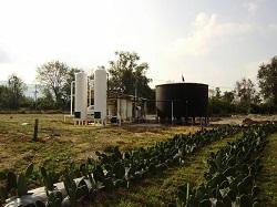 Elqui Global diseña y construye plantas de proceso de biogas del nopal, un biocombustible desconocido